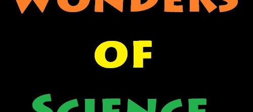 wonder of science Phenomenon a phenomenon is simply an observable event in the science classroom a carefully chosen phenomenon can drive student inquiry phenomena add relevance to the science classroom showing students science in their own world.