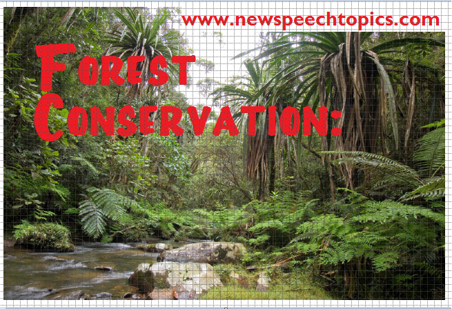 write an essay on the conservation of forest resources