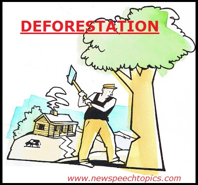 write a short essay on causes and effects of deforestation