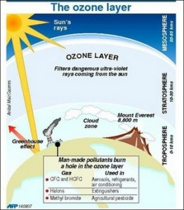 Ozone layer protection essay